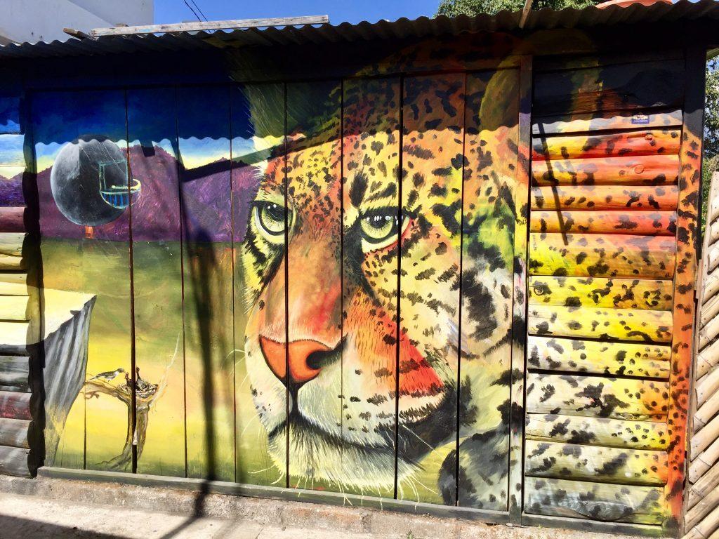 Walls of San Pedro La Laguna are full of colourful graffiti.
